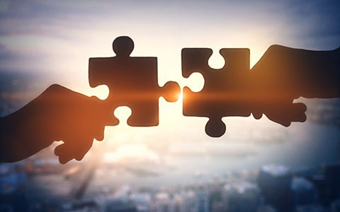 Mergers Puzzle Pieces