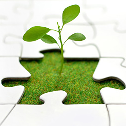 Sustainability Puzzle Piece